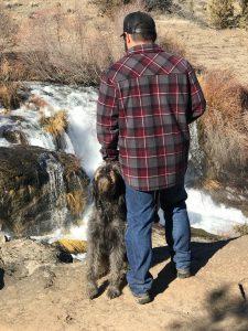 koahberry-dog-koah-labradoodle-pet-attention